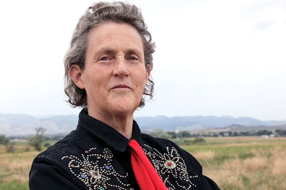 """Temple Grandin on DSM-5: """"Sounds like diagnosis by committee"""""""