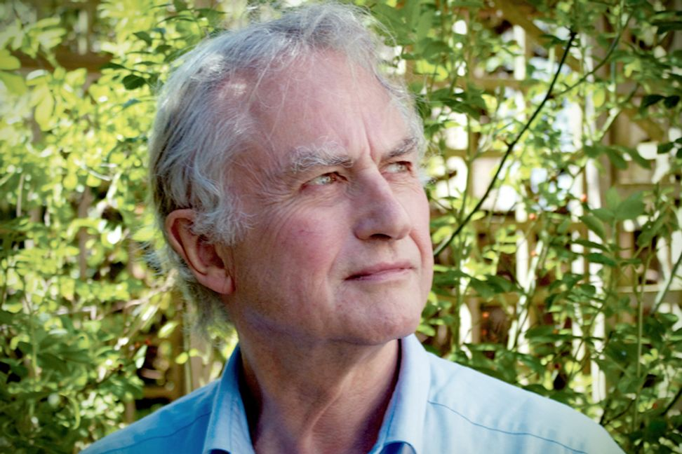 """Richard Dawkins: """"Is there a men's rights movement?"""""""