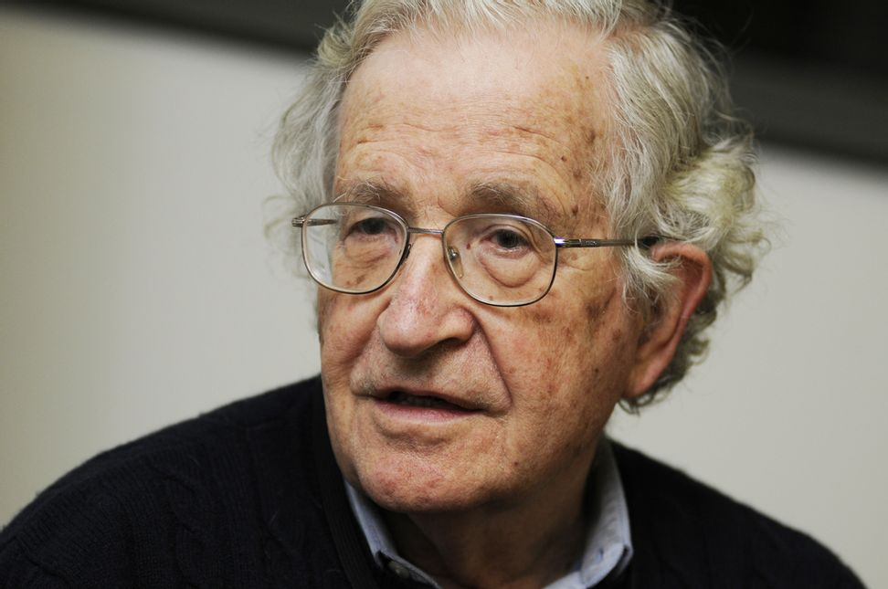 Noam Chomsky: America's ISIS strategy is plainly not working | Salon.com
