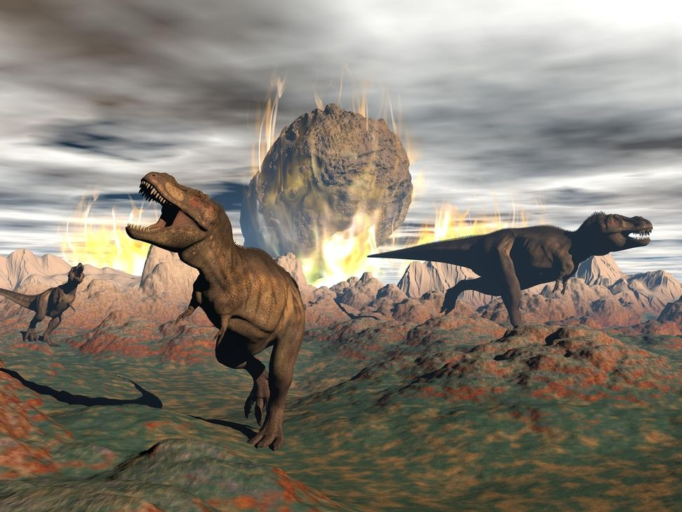 Mammals may have slept through the asteroid that wiped out the dinosaurs