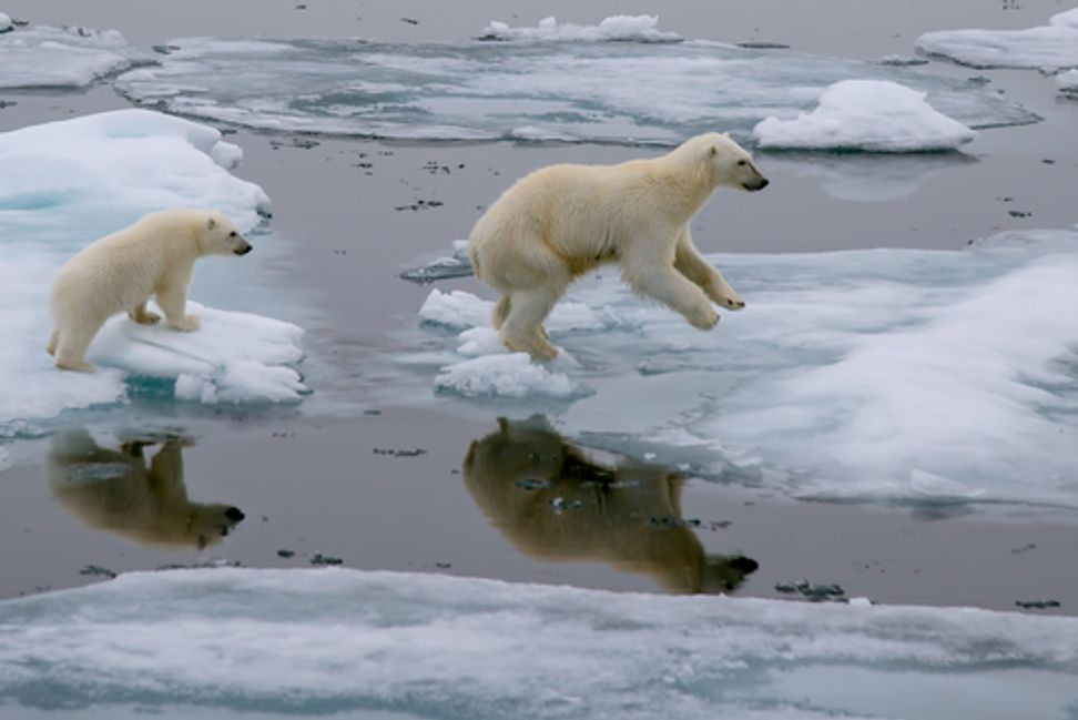 I was once a climate change denier | Salon.com