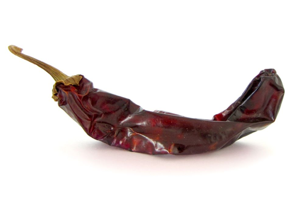 The mysteries of chili heat: Why people love the pain | Salon.com