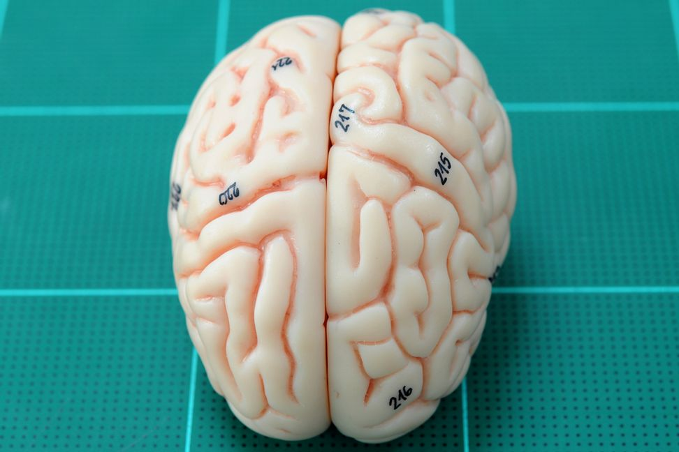 Your brain is protecting you: How we purge bad memories