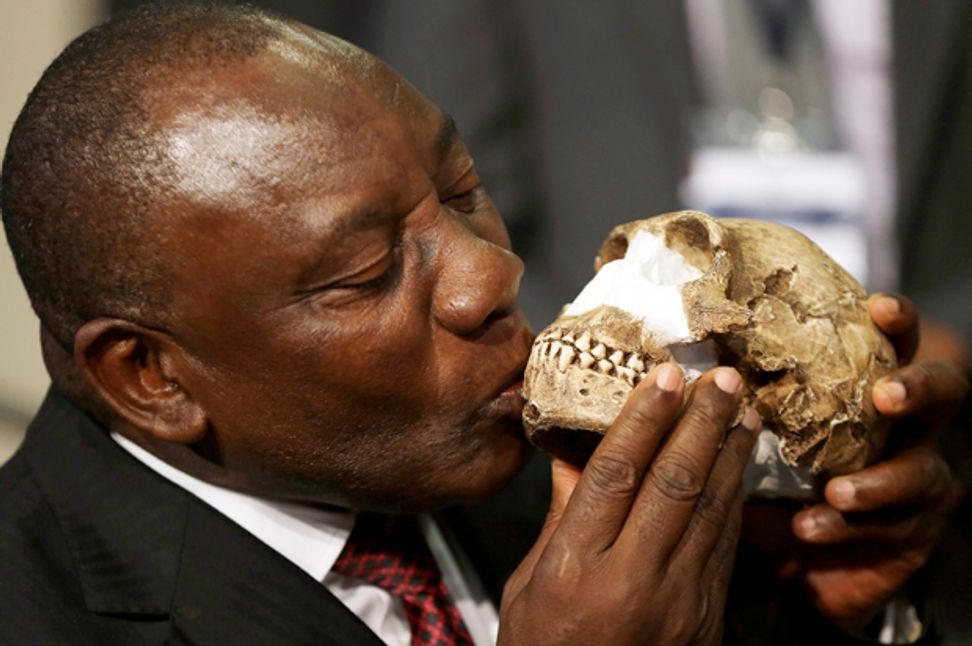 Human evolution hasn't been a process of gradual fine-tuning — as finds like Homo naledi in South Africa make plain