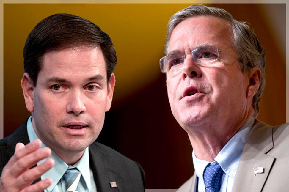 Jeb Bush vs. Marco Rubio gets ugly: Florida man attacks friend during job interview
