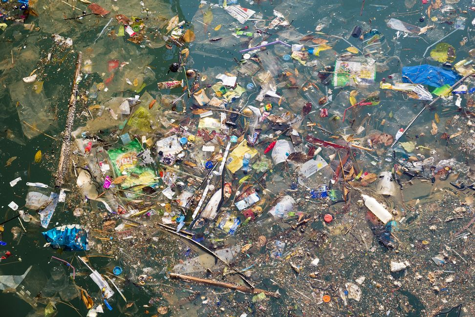 We're dumping the equivalent of one garbage truck's load into the ocean every minute: Soon there will be more plastic than fish in the ocean