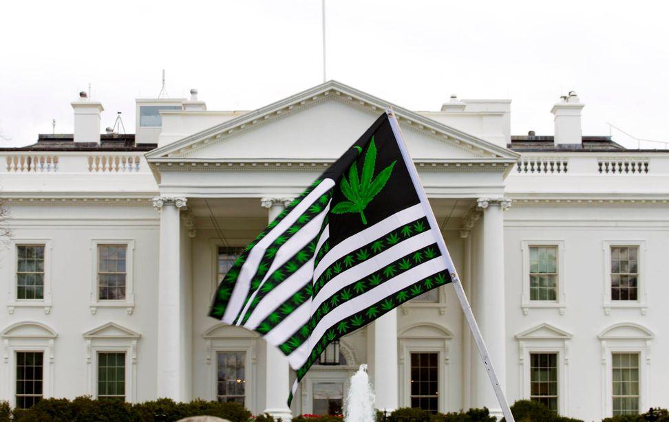 Washington may have finally found bipartisan consensus with Congressional Cannabis Caucus | Salon.com