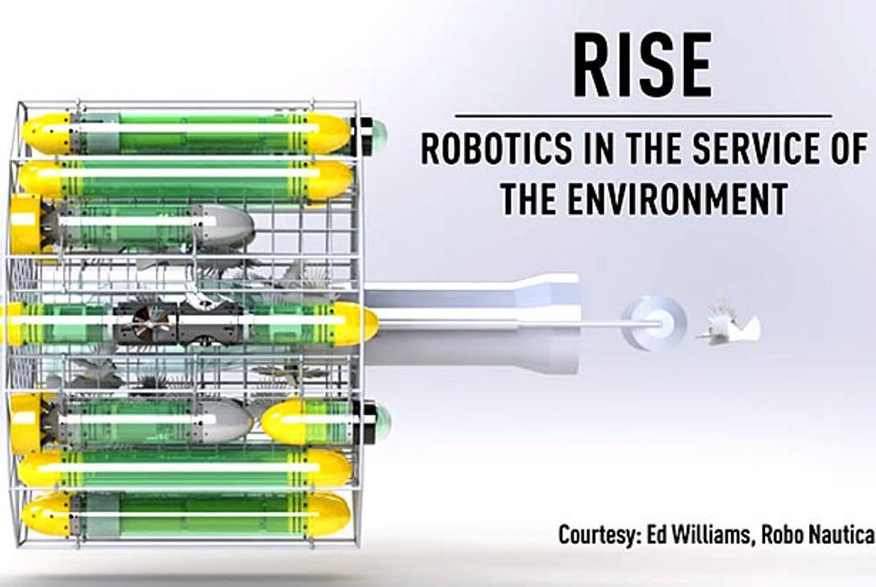 iRobot CEO invents Terminator-style hunter-killer to combat invasive, venomous lionfish