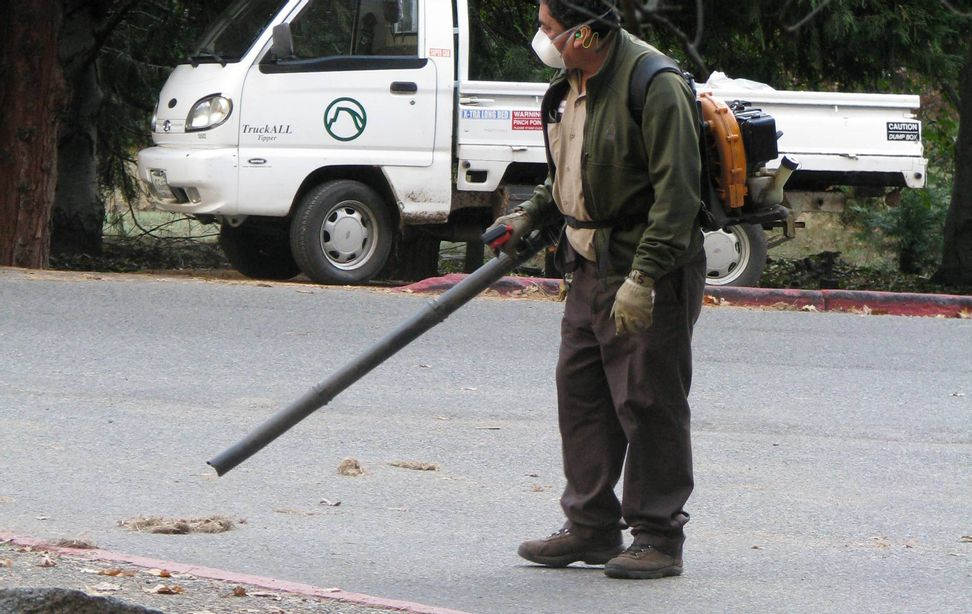 Noisy, but that's not all: the health threat posed by leaf blowers   Salon.com