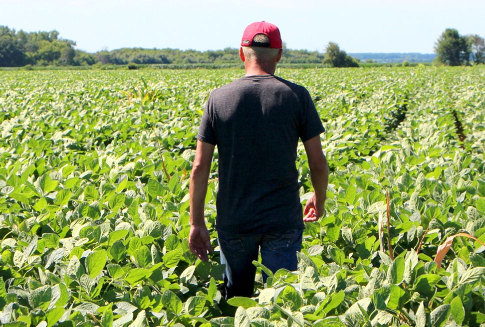 For a new generation of farmers, accessing land is the first step toward tackling consolidation